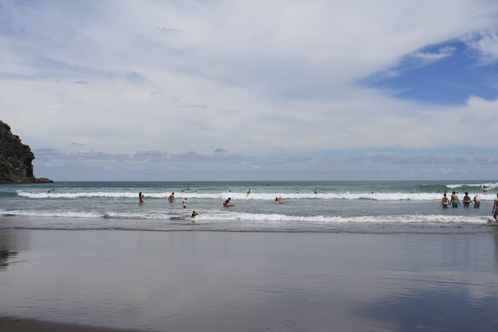 Piha Beach and Kitekite Trail (6/6)